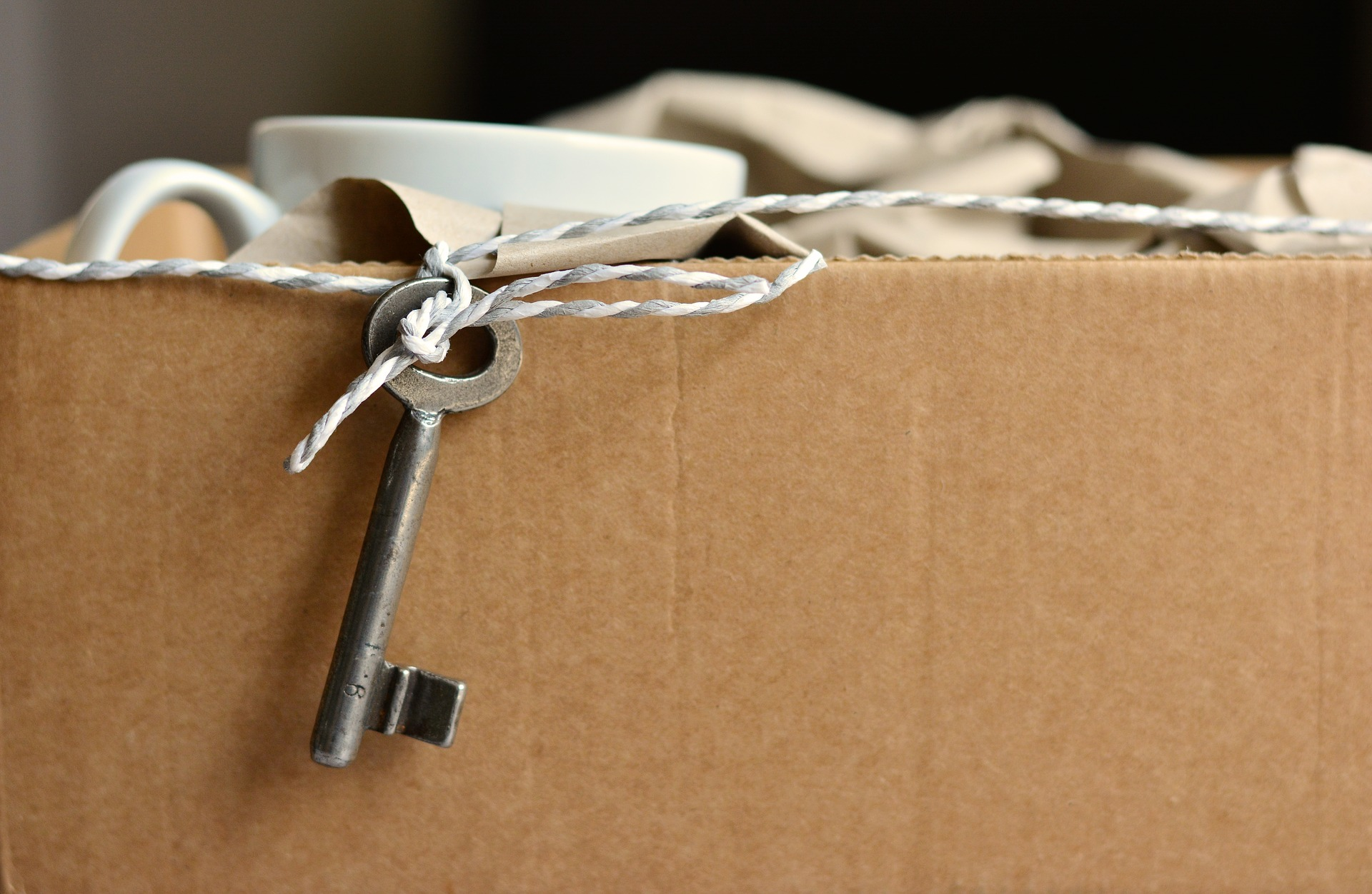 move_2481718_1920_1.jpg